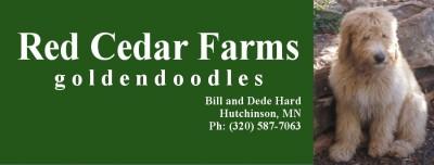 Red Cedar Farms Goldendoodles