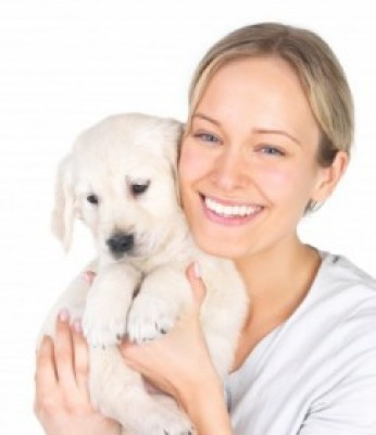Dog Breeders Showcase - Your Online Source for Finding Reputable Dog Breeders Near You